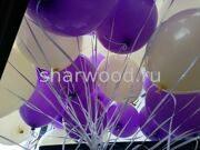 гелиевые шарики цвета слоновой кости и фиолетового оттенка